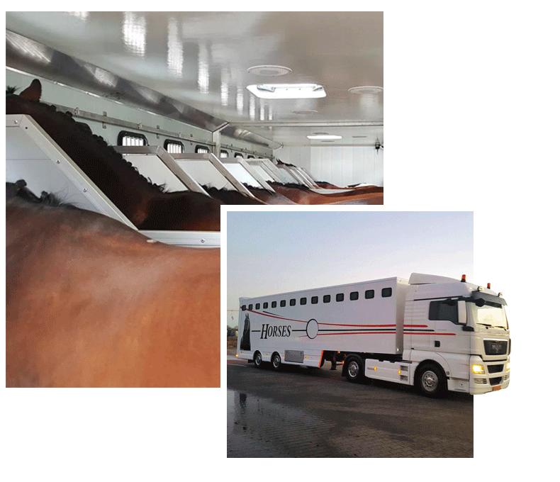 Transport_Heuker